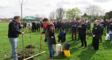La Province de Hainaut et la Ville de Chièvres distribuent gratuitement des arbres