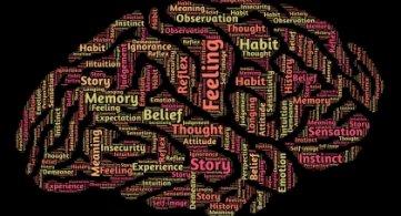 Conférence Hainaut Seniors Mouscron - La carte du cerveau